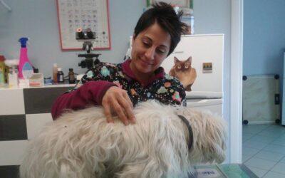 Intervista ad un'esperta di alimentazione animale